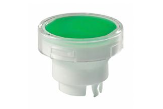 AT-3005-JF cap green